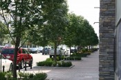Kansas City Commercial Landscaping | Park Place